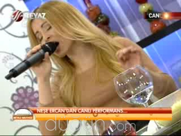 Neşe Ercan Band