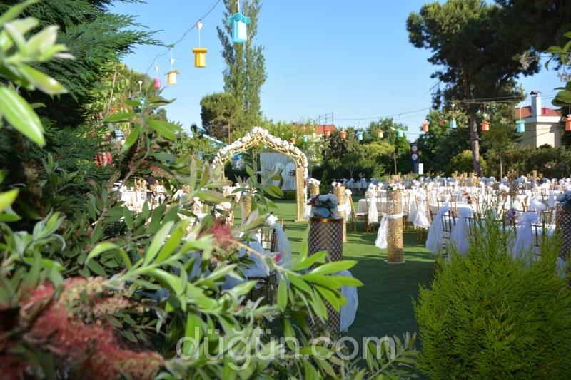 Quince Garden